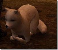 tier4-desert-fox-appearance-change-5-6-v.myst-frontanglelaydown