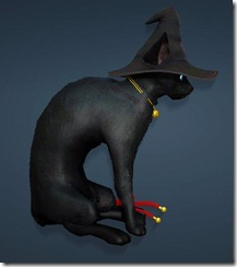 bdo-charlotte-witch-hat-2
