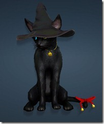 bdo-charlotte-witch-hat