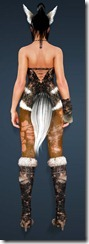 bdo-gray-fox-costume-kuno-6