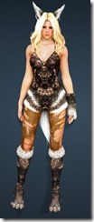 bdo-gray-fox-costume-sorc-5