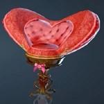 L'elisir d'amore Chair