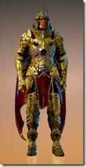 bdo-void-article-warrior-costume-6
