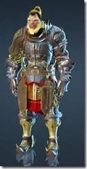 bdo-dastron-costume-10