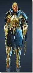 bdo-warrior-gorteband-costume-10
