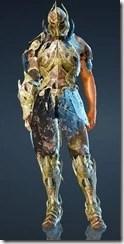 bdo-warrior-gorteband-costume-11