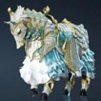 Terrminé Horse Gear