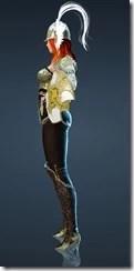 bdo-arendo-valkyrie-costume-2