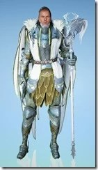 bdo-crown-eagle-costume-wizard-9