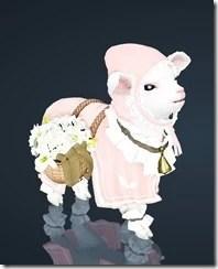 bdo-lamb-pet-2