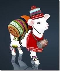 bdo-lamb-pet-3