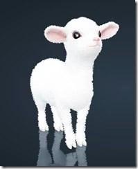bdo-lamb-pet