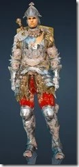 bdo-classic-bern-warrior-outfit-11