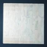 Breezy White Coral Floor