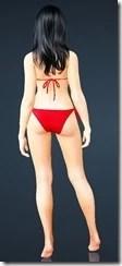 bdo-envi-bikini-2