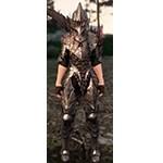 Blackstar Armor and Helm
