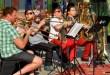 Koncertek élőben a BFZ zenészeivel! – akár a Balatonon is