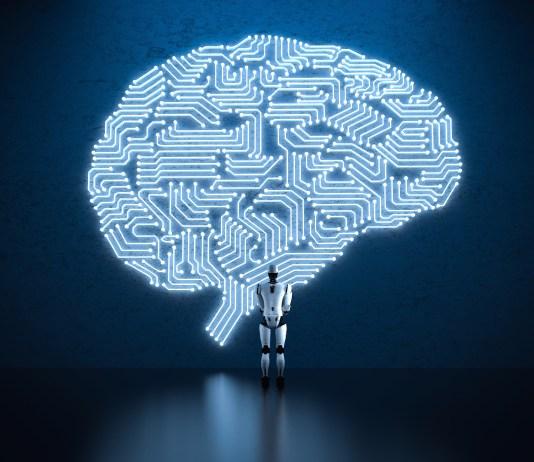 digital wired human brain