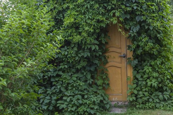 hidden back door