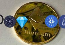 Ethereum alternatives