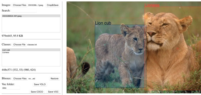 object detection image annotation