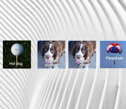 Adversarial examples machine learning