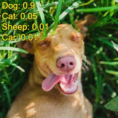 machine learning image classification dog