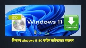 Windows 11 ISO ফাইল ডাউনলোড