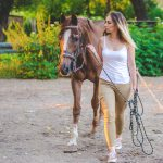 Horse Tack And Equipment A Primer