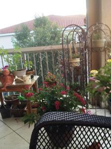 container garden deck