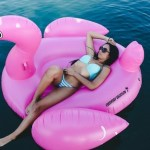 Everyday Vacation's Easy Inflate Giant Pink Flamingo Float Review