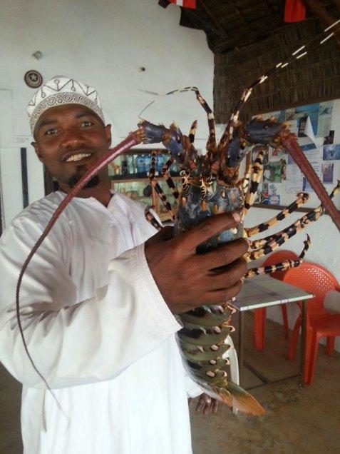 lamu lobster
