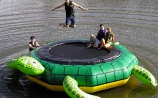 turtle trampoline water toy island hopper