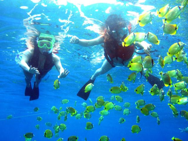koh-rong-samloem-island-snorkel
