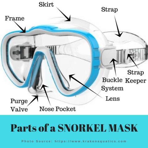 parts of a snorkel mask
