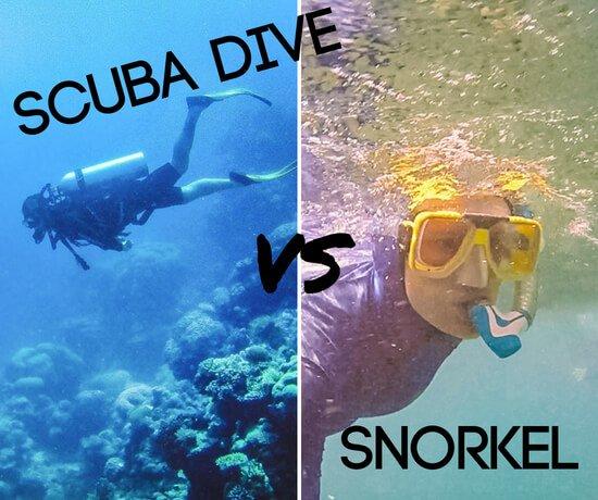 snorkel vs scuba dive