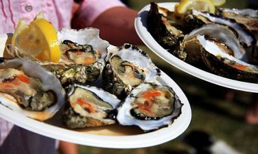 Bucerias Mexico oyster festival