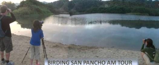 San Pancho bird tour early morning