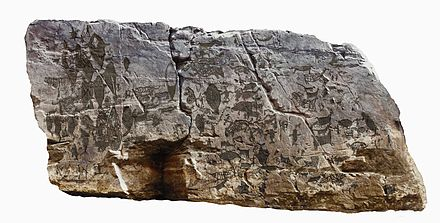 Ancient Japanese rock engraving features whale hunting