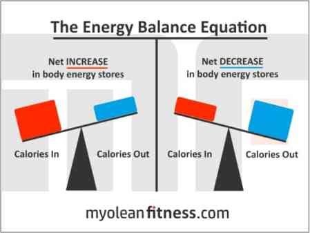 CICO-Myolean-Fitness-Energy-Balance-Equation