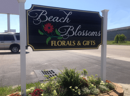 Beach Blossoms