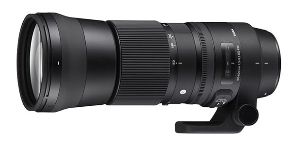 Review: Sigma 150mm-600mm Contemporary Lens