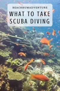 scuba dive packing guide