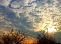 Winter Sunrise on the Eastern Shore