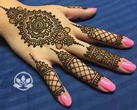 Henna Anatomy 1 Lab