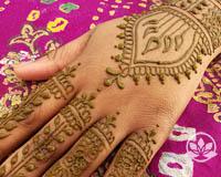 Henna Anatomy Class Online