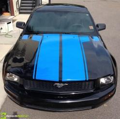 Blue Vinyl Striping on Mustang