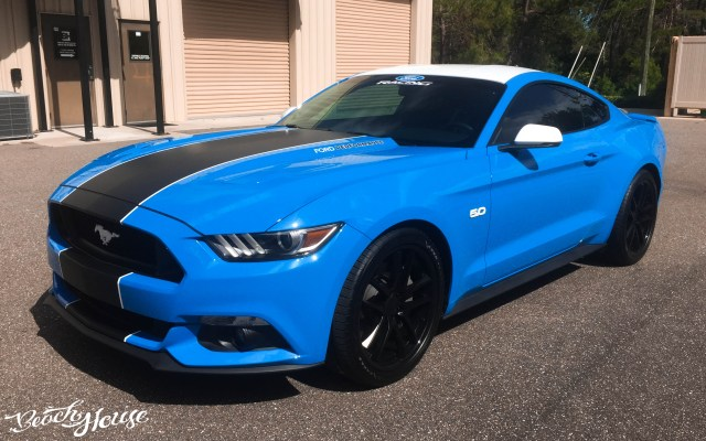 2017 Ford Mustang Wrap and Racing Stripes in Port Orange Florida