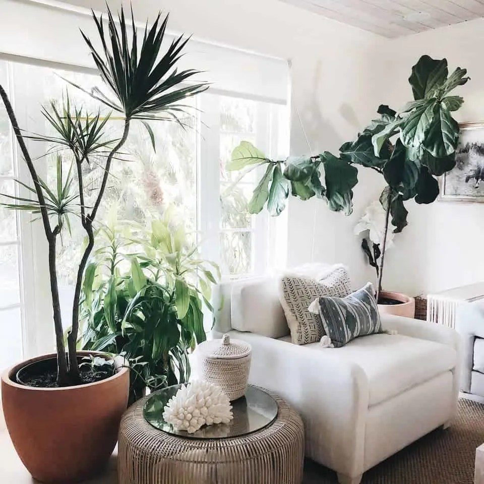 Bohemian Elegant Luxury Paradise AirBnb Beach House Decor - reading nook with indoor plants