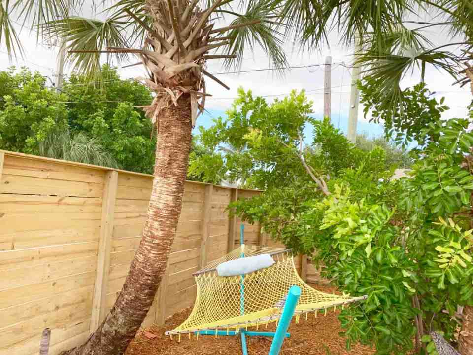 Backyard makeover - hammock under the palm trees